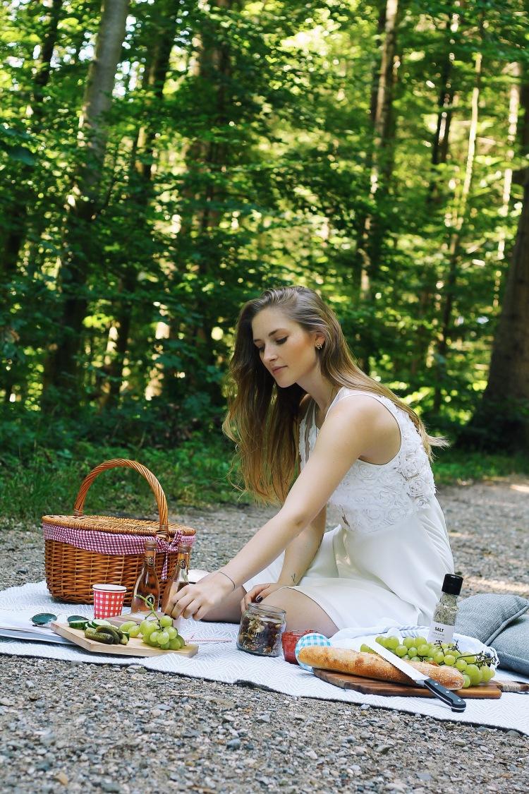 lauraherz_picknick_fürstvonmetternich_picknickguide_münchen